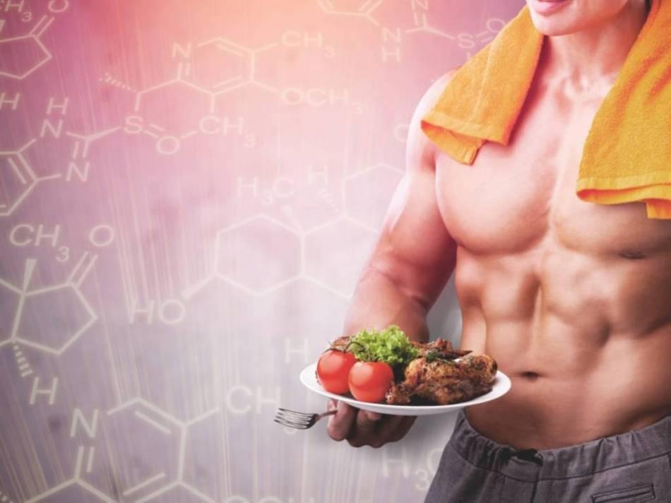 Músculo, gordura e osso
