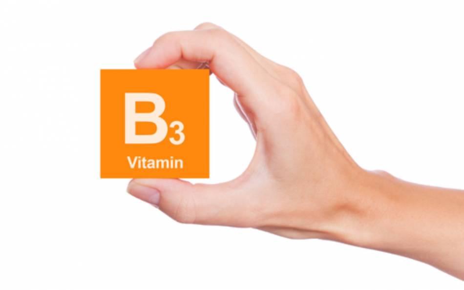 Como funciona a Vitamina B3?